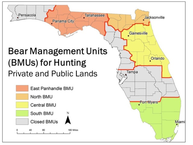 bear-management-units-hunt-map